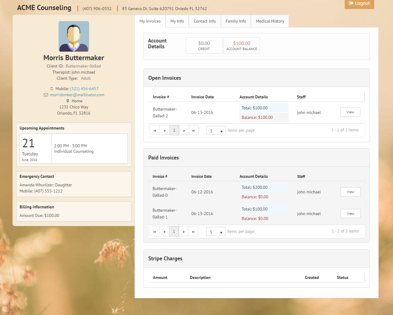 Clients can pay invoices online using the client portal in TherapyZen